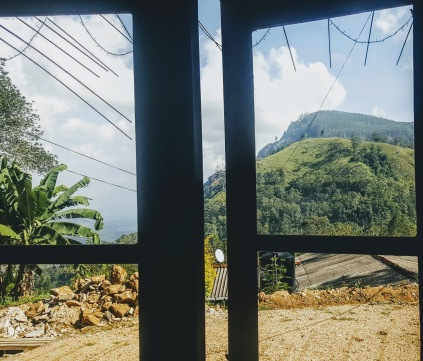 Pairsio View
